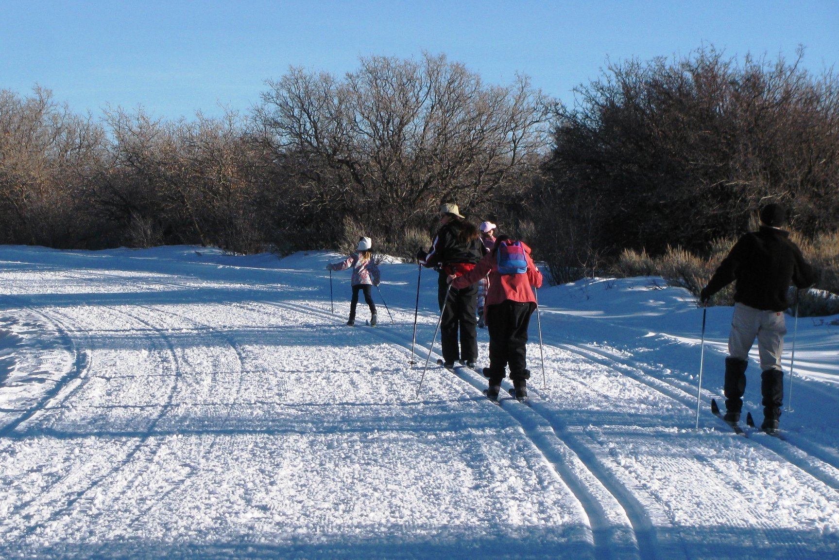 image of cross country skiing