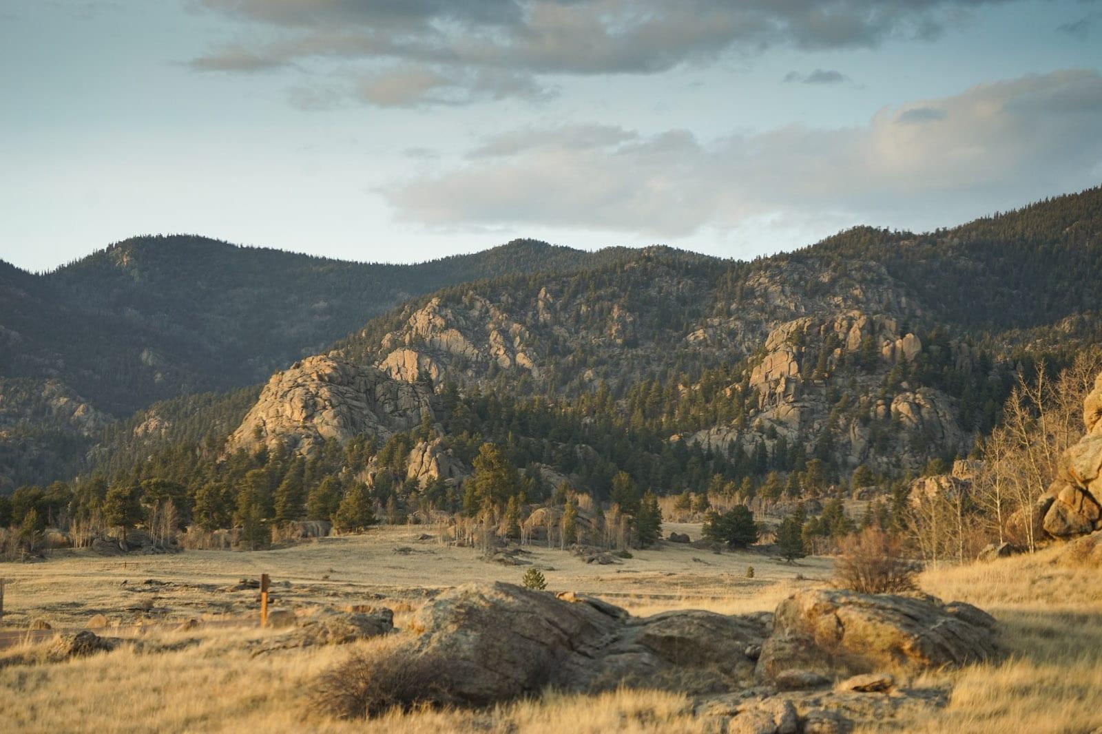 Eleven Mile State Park Hiking Trails