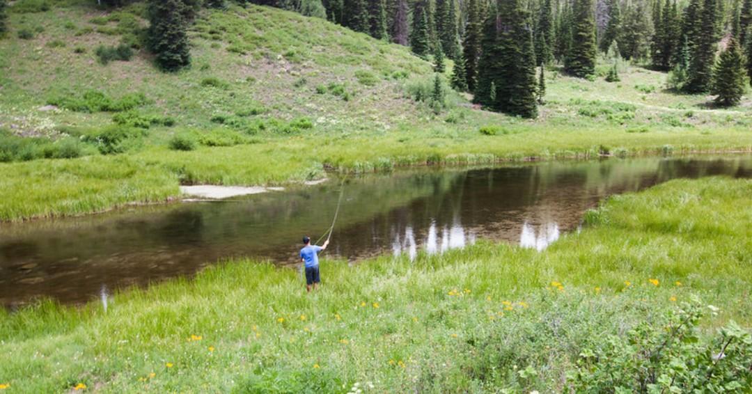 image of fishing at colorado river