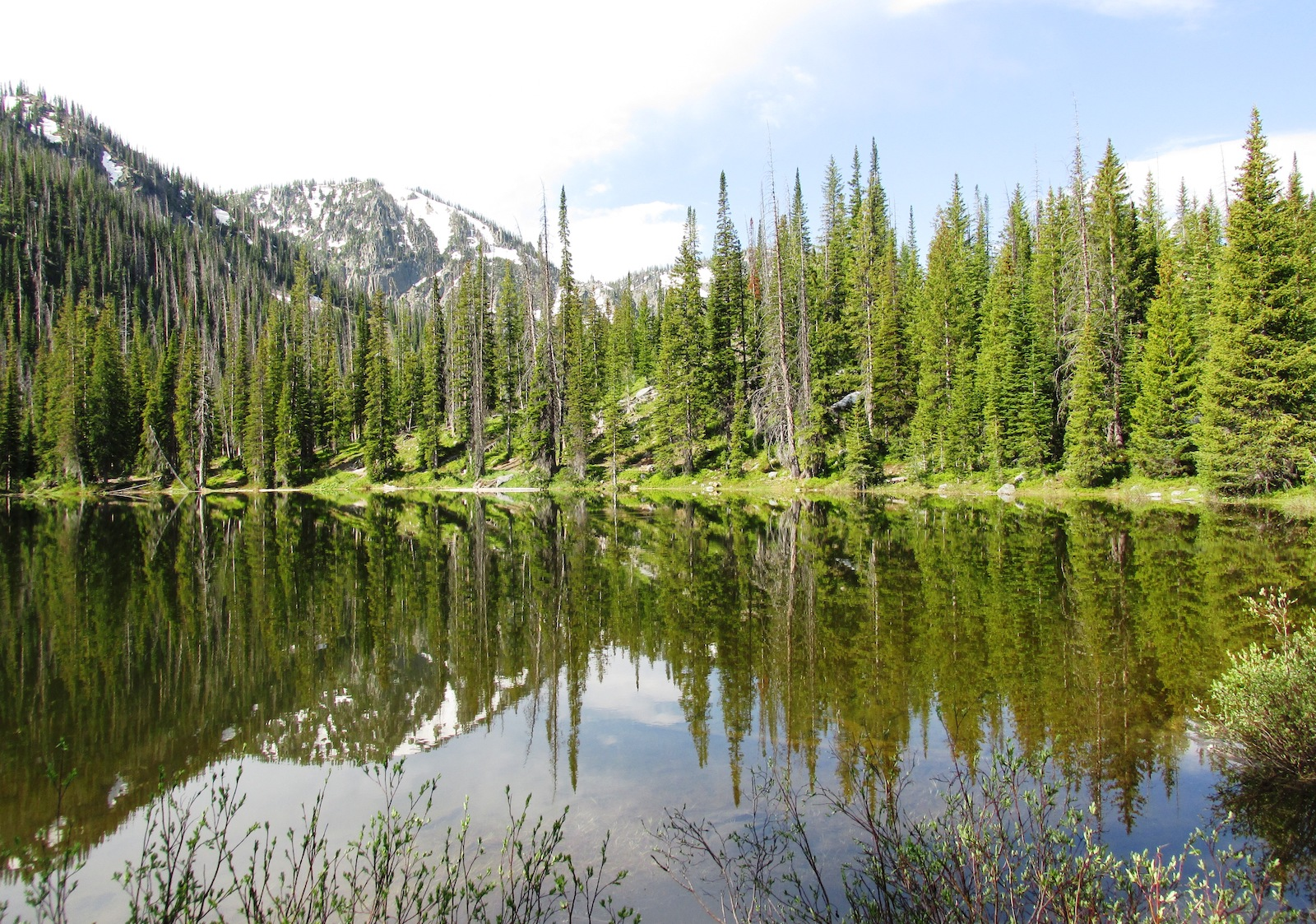 Gold Creek Lake Routt National Forest