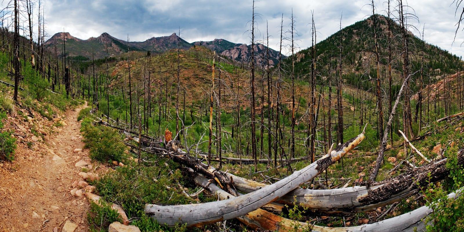 Hiking Goose Creek Trail Jefferson County Colorado