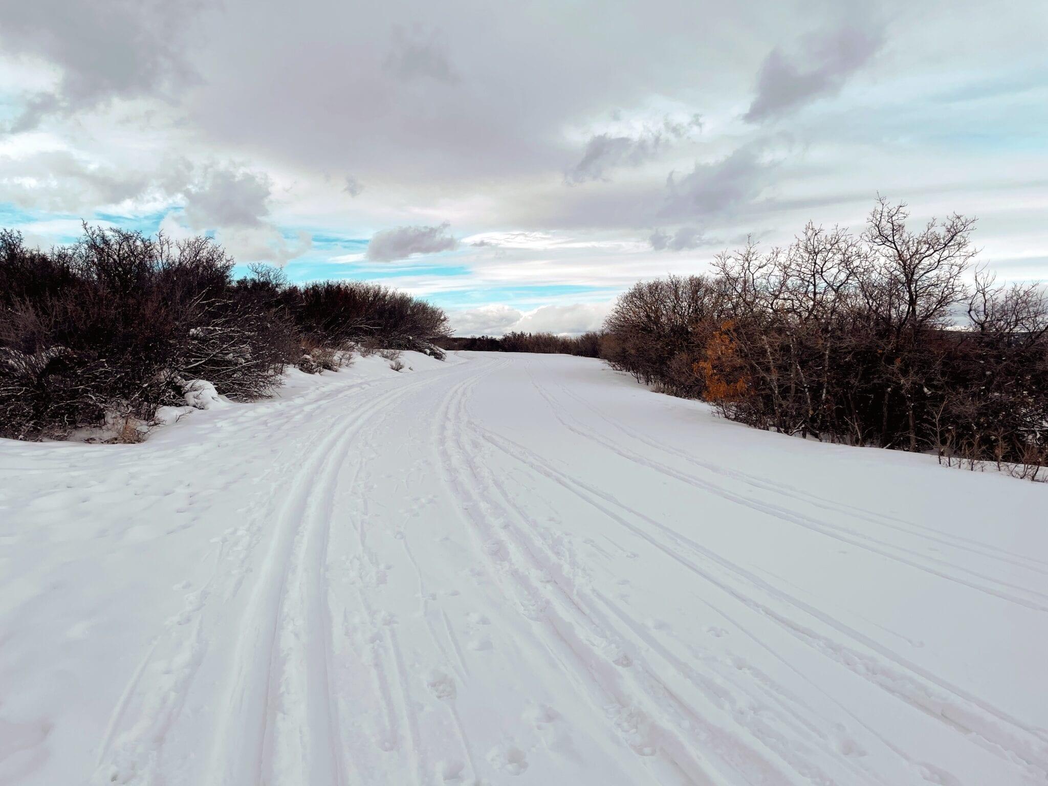 image of south rim road at black canyon