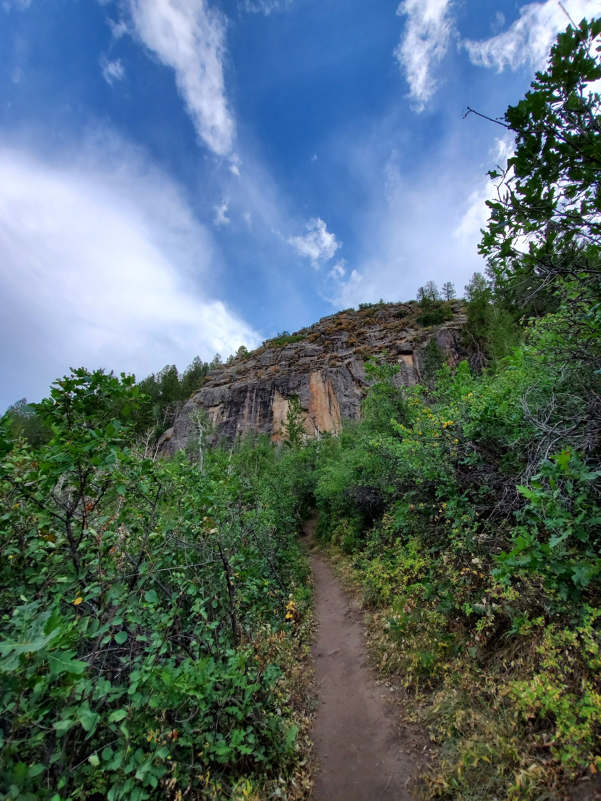 Hiking along Oak Flat Loop Trail, Black Canyon of the Gunnison National Park