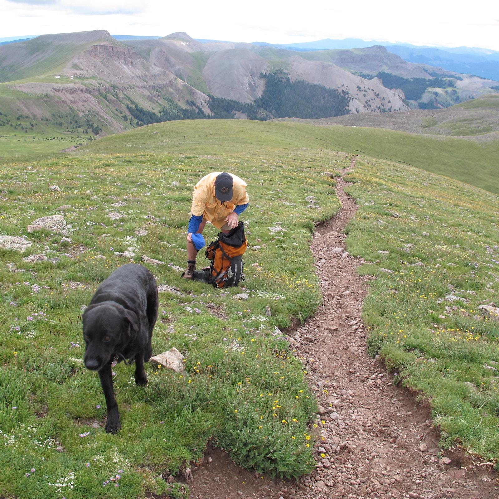 Hiking Trail Uncompahgre Peak Colorado