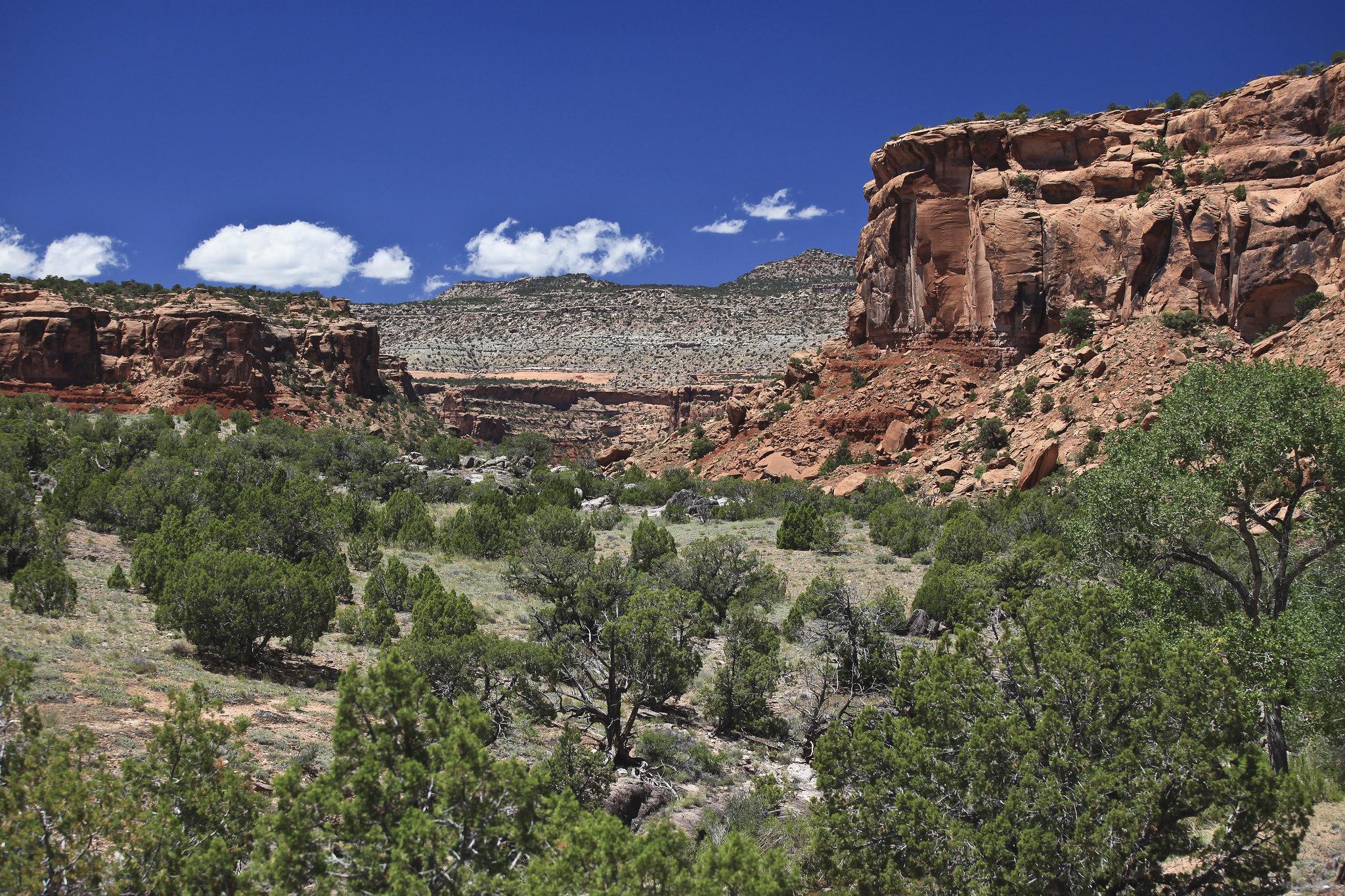 image of dominguez canyons