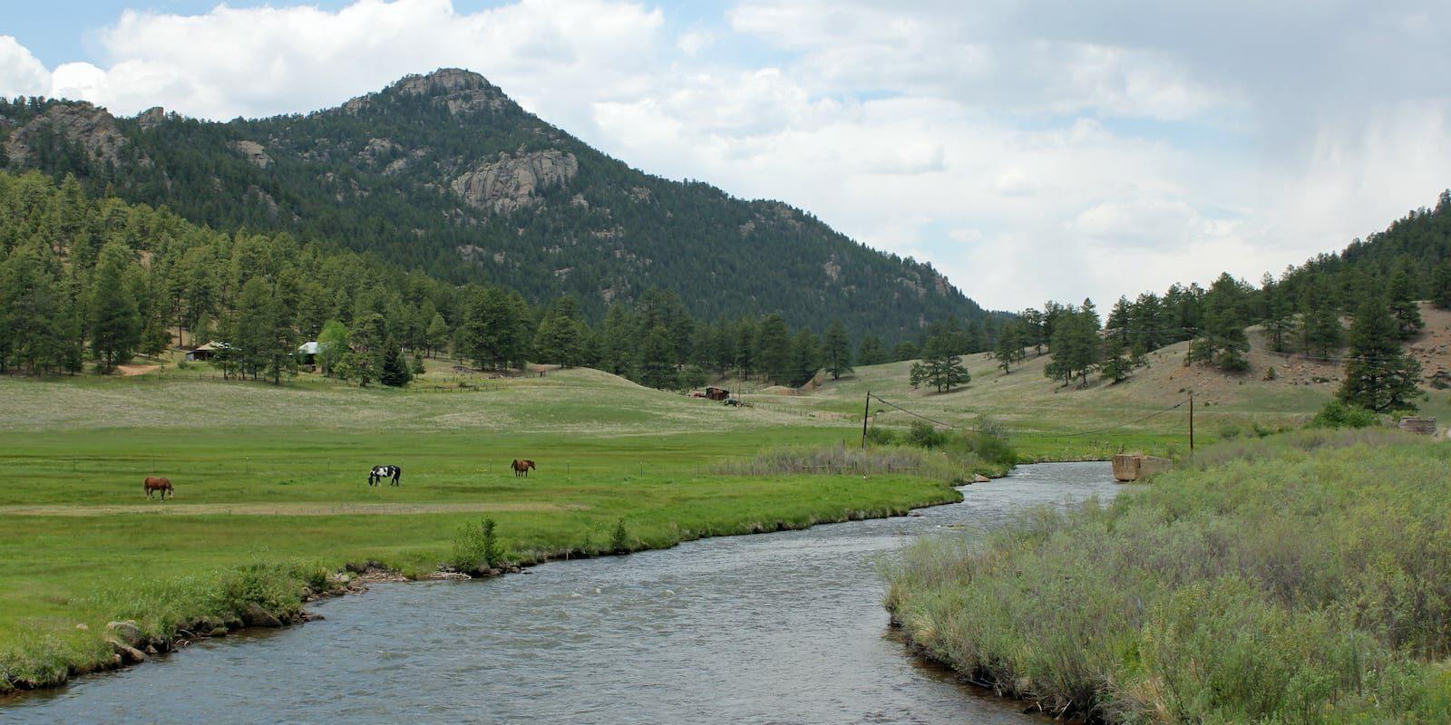 North Fork of the South Platte River Near Buffalo Creek, Colorado