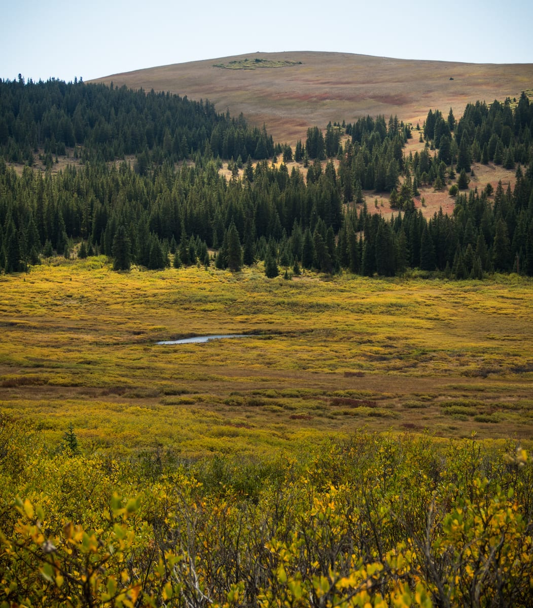 Rich Creek Trail Bagian Atas Colorado