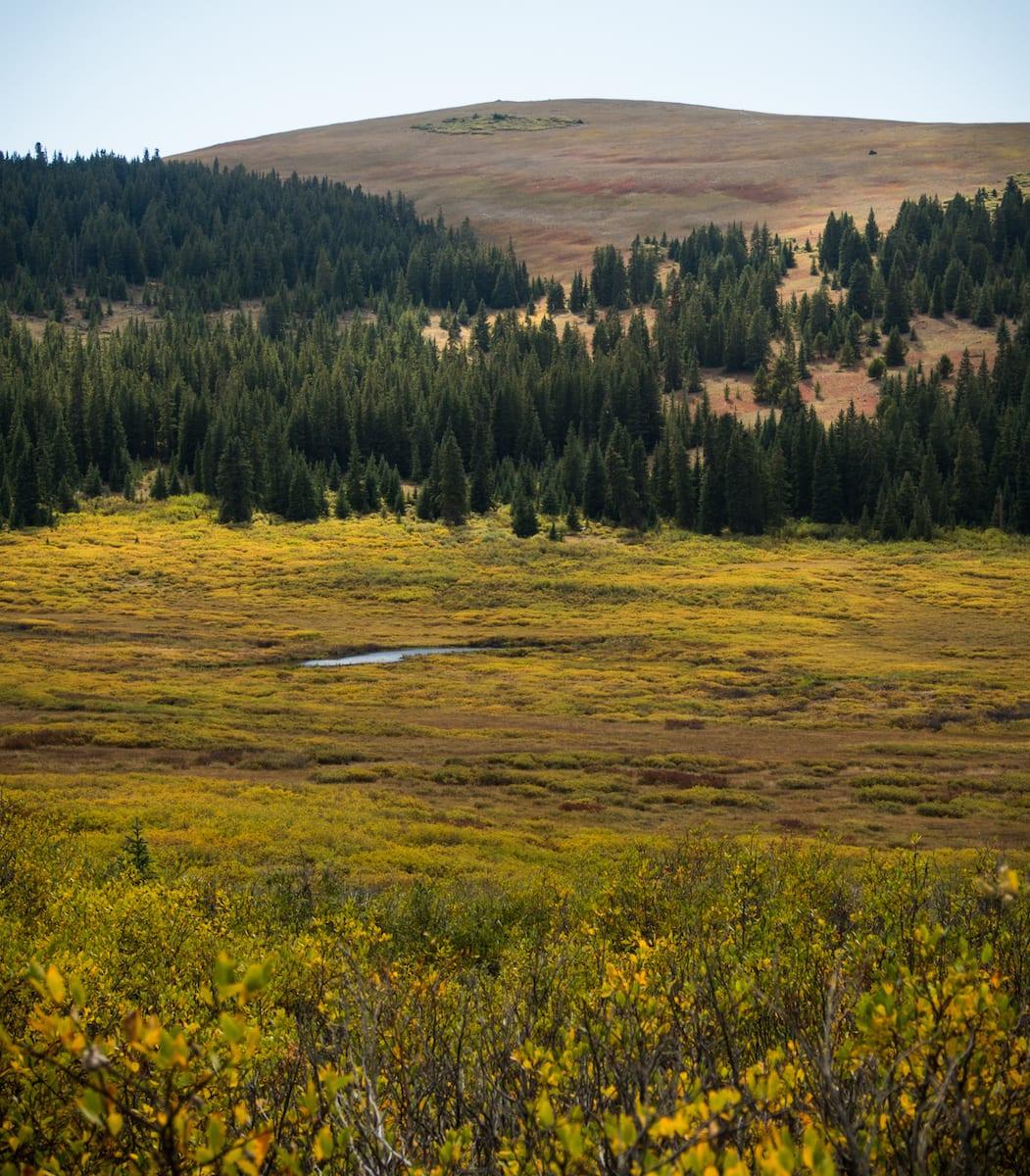 Rich Creek Trail Upper Section Colorado