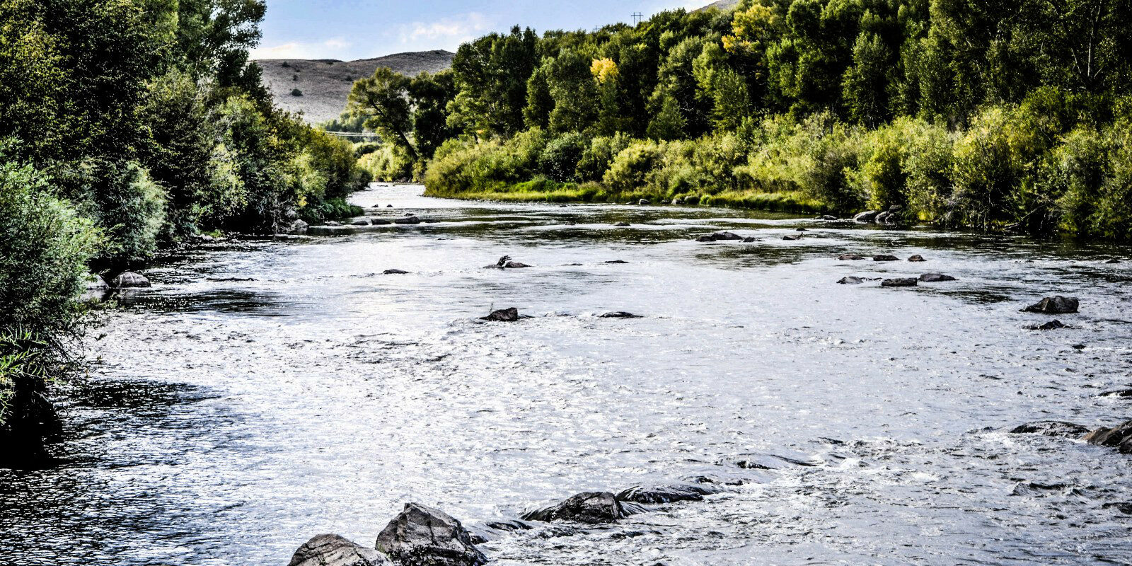 Rio Grande River Fishing Del Norte CO