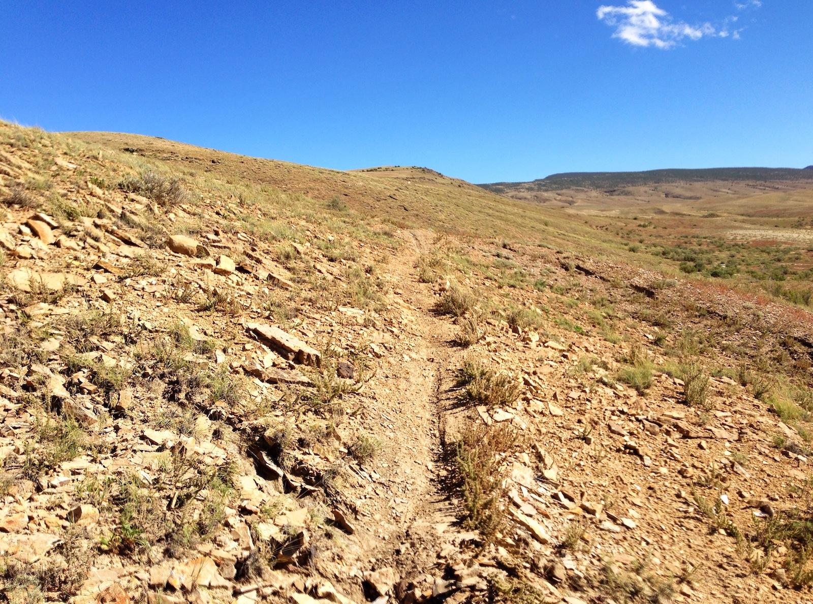 Sidewinder Trail Delta Colorado
