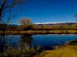 Image of the Walden Ponds Wildlife Habitat in Boulder, Colorado