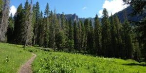 Eagle Mountain from Fourmile Falls Trail Colorado