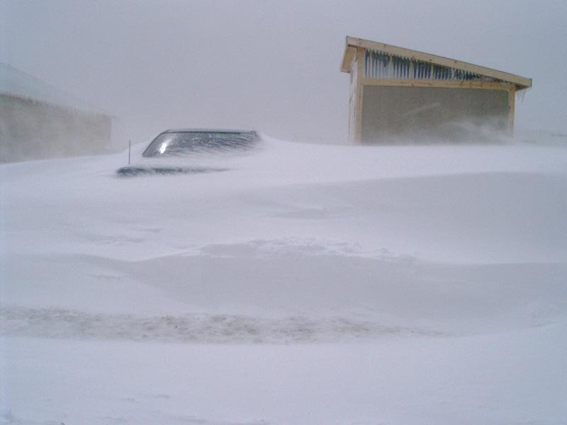 Blizzard Evergreen Colorado 2003