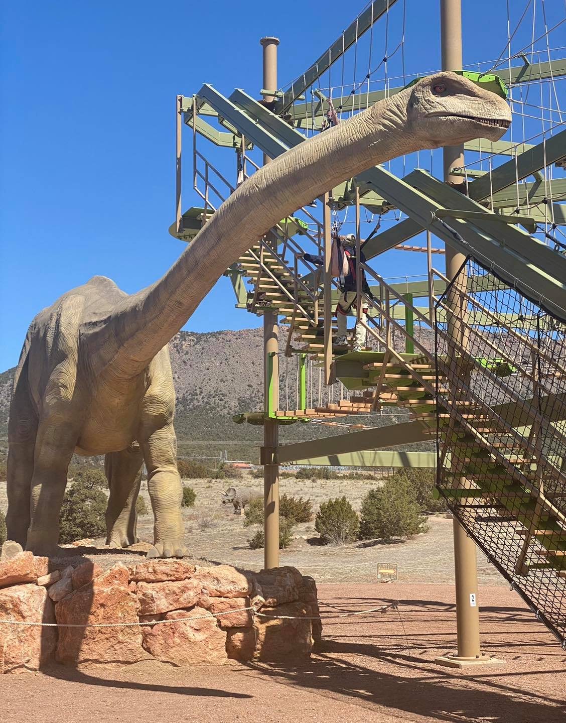 Image of the ropes course at Royal Gorge Dinosaur Experience