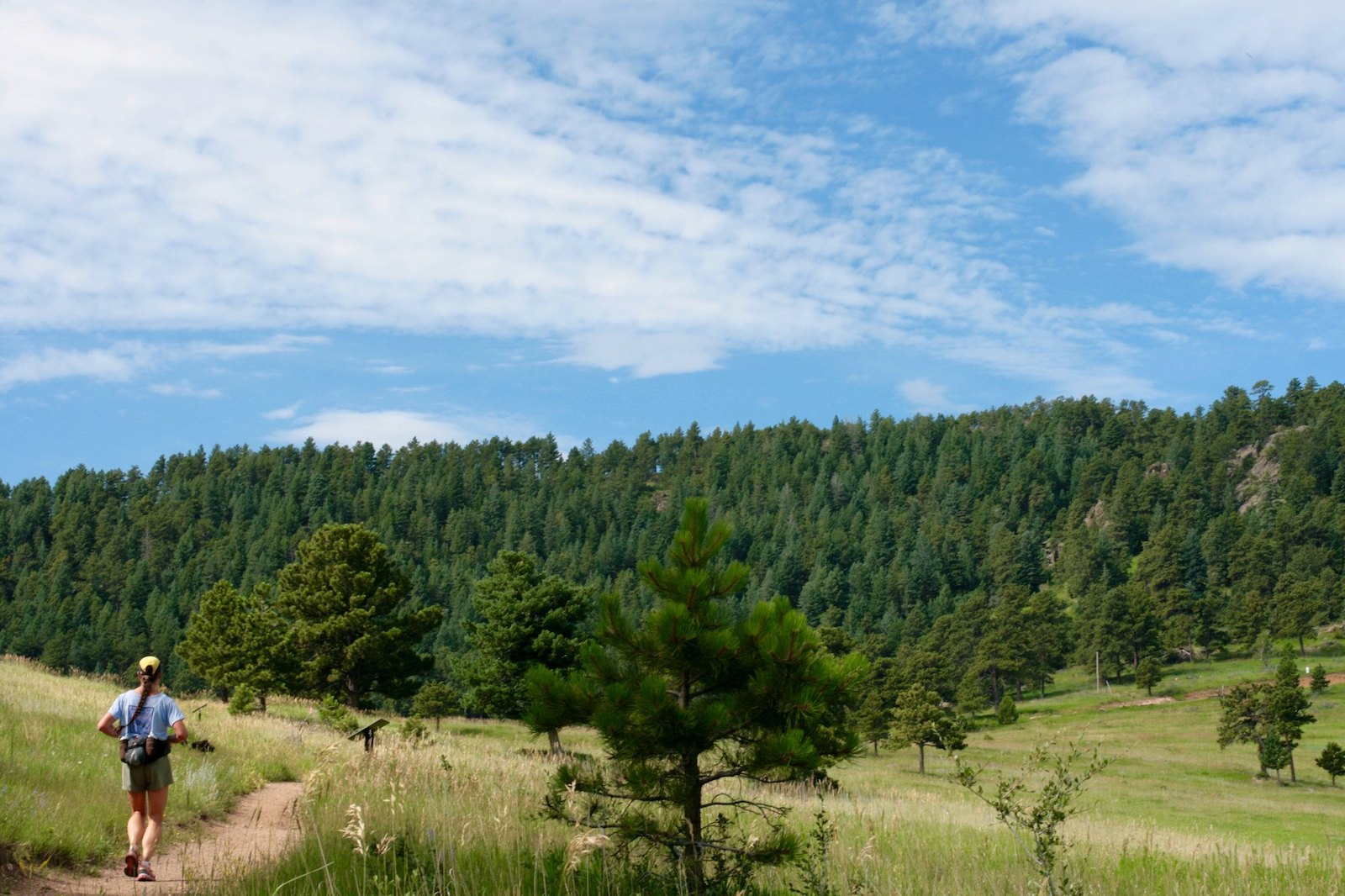 Image of a runner at White Ranch Park in Golden, Colorado