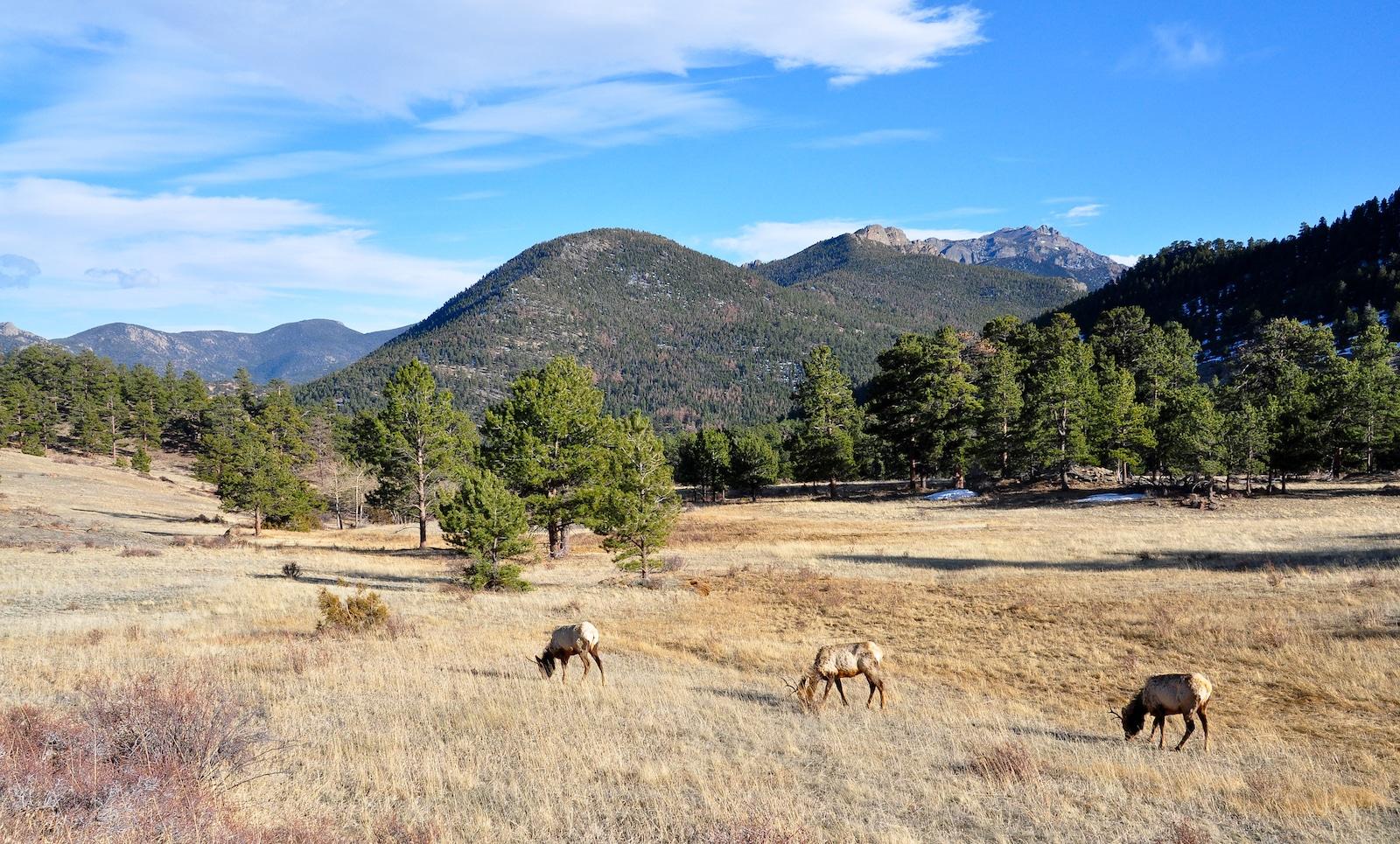 Taman Nasional Gunung Rocky, Colorado