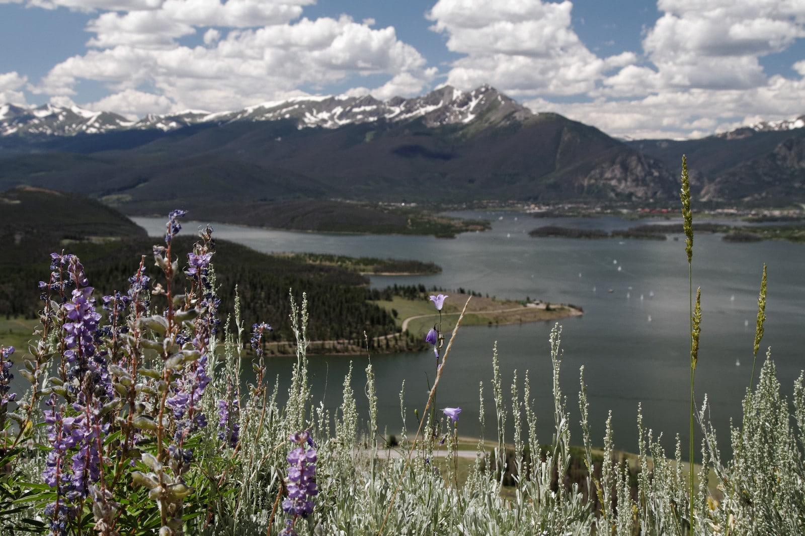 Tenderfoot Mountain Trail, CO