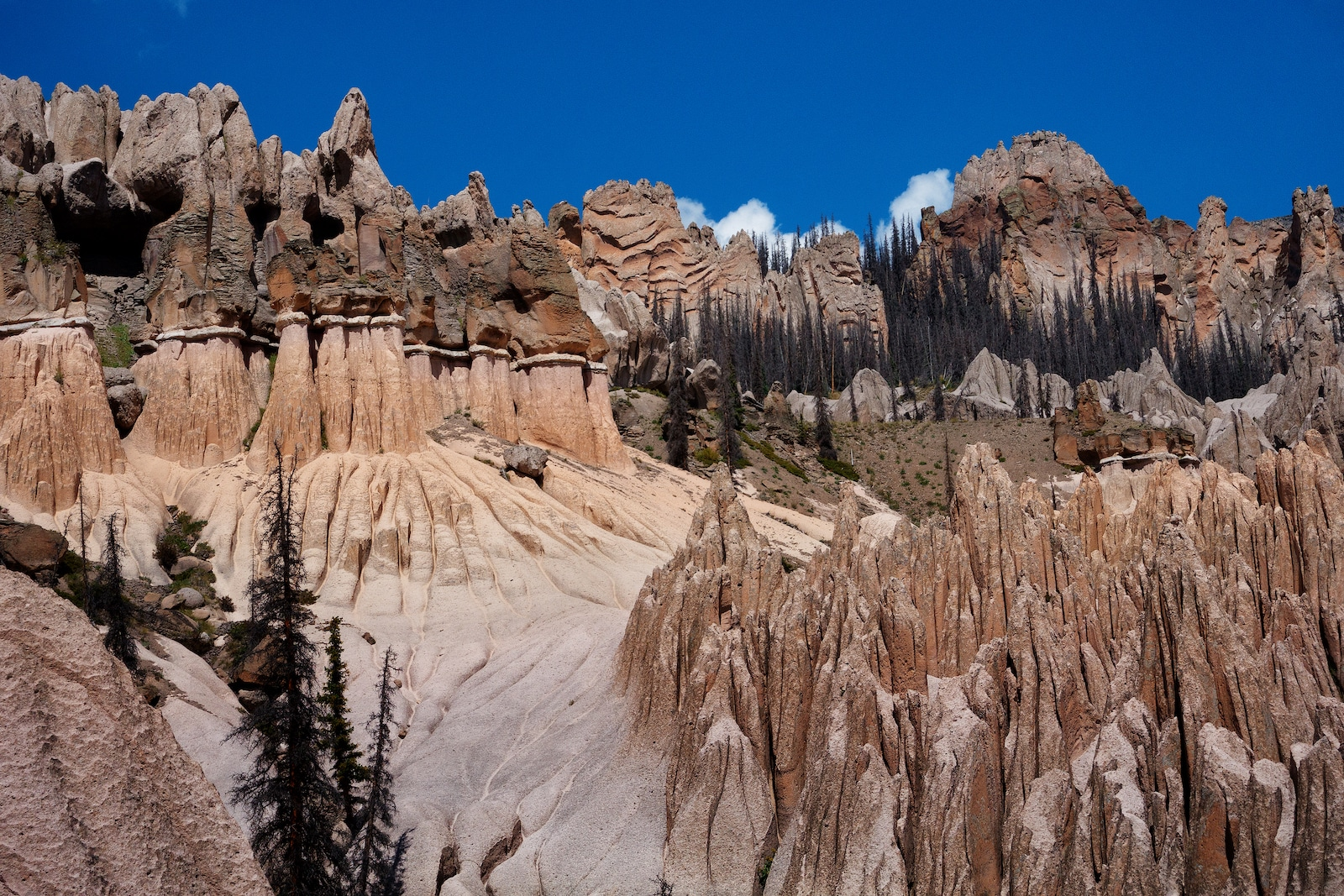 Area Geologi Wheeler, CO