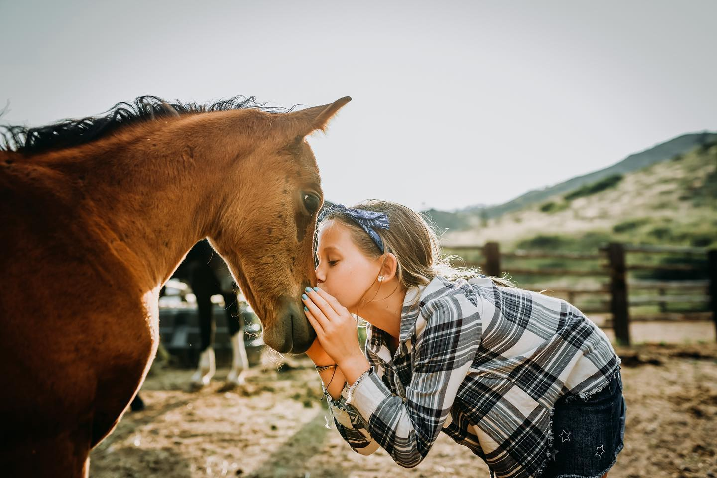 Image of a child kissing a baby horse at Cherokee Park Ranch in Livermore, CO