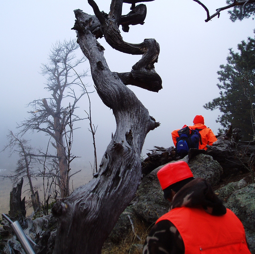 Two hunters wearing orange in Mount Evans Wilderness