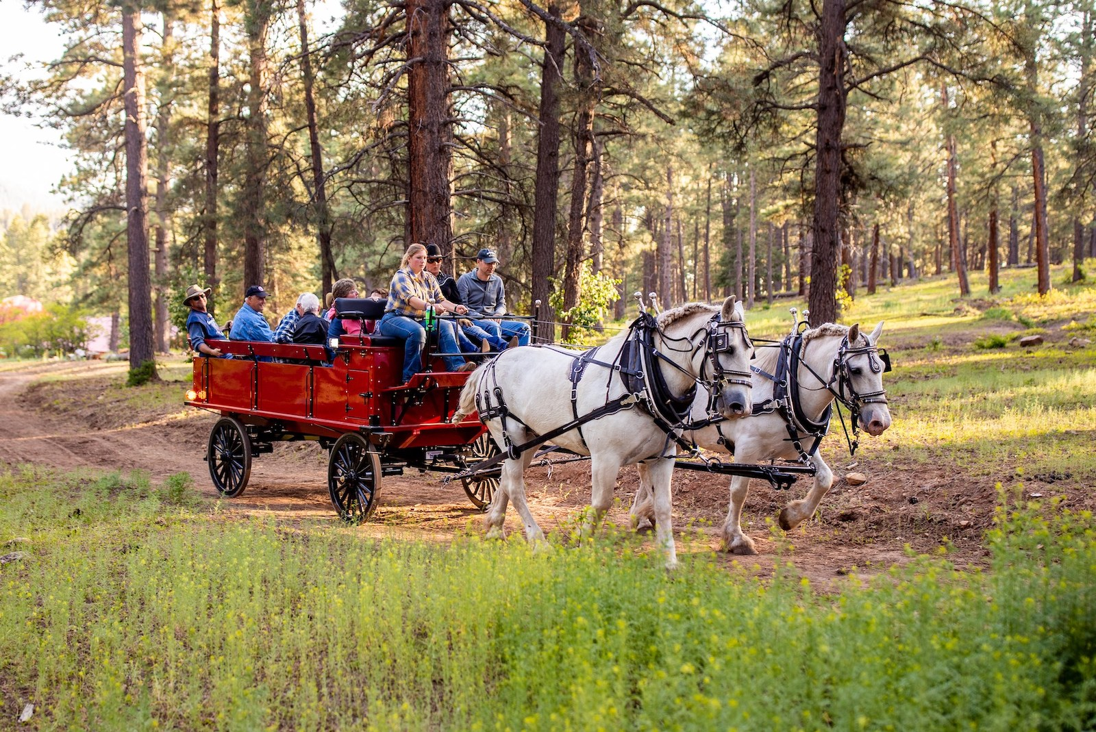 Image of a wagon pulling people at Colorado Trails Ranch in Durango