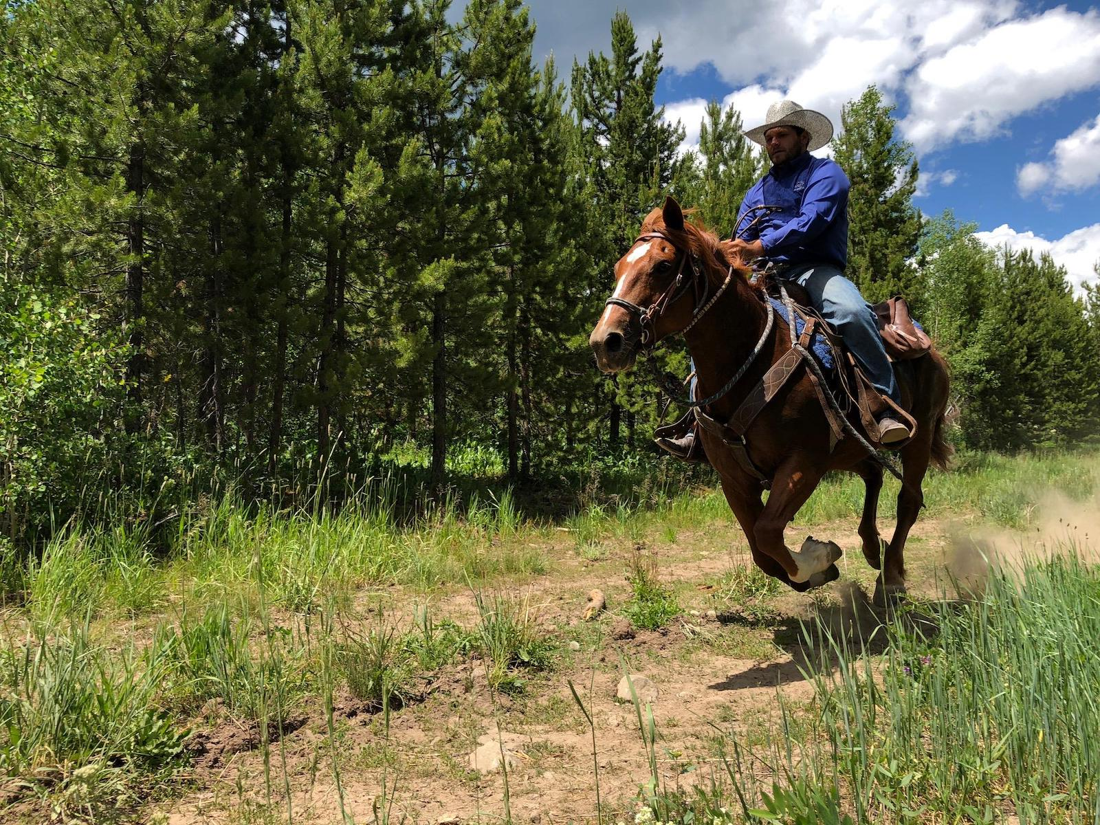 Image of a man riding a horse at the Elk River Guest Ranch in Clark, CO