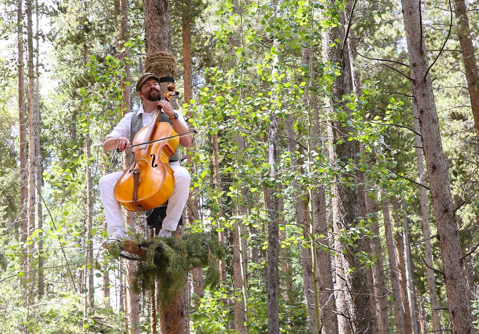 Image of a man playing a cello in a tree in the forest in Breckenridge, Colorado
