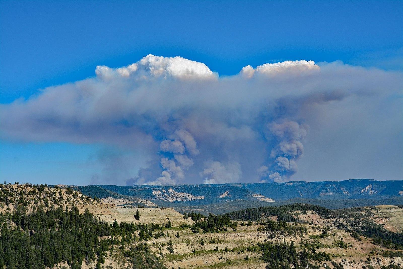 Gambar kolom asap dan awan flammagenitus dari kebakaran Pine Gulch di Colorado