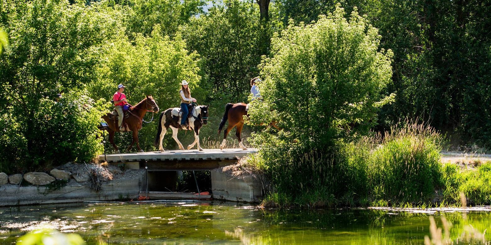 Image of people riding horses at The High Lonesome Ranch in De Beque, Colorado