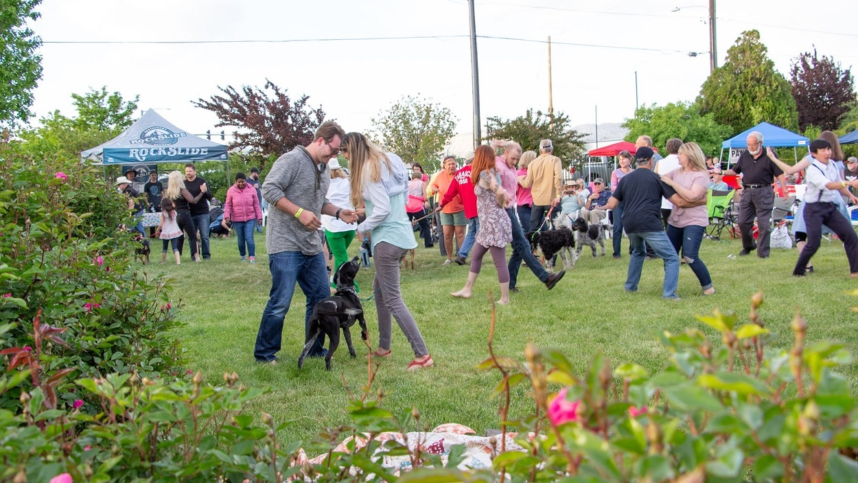 Image of the crowd dancing at the Wuffstock Music Festival in Grand Junction, Colorado