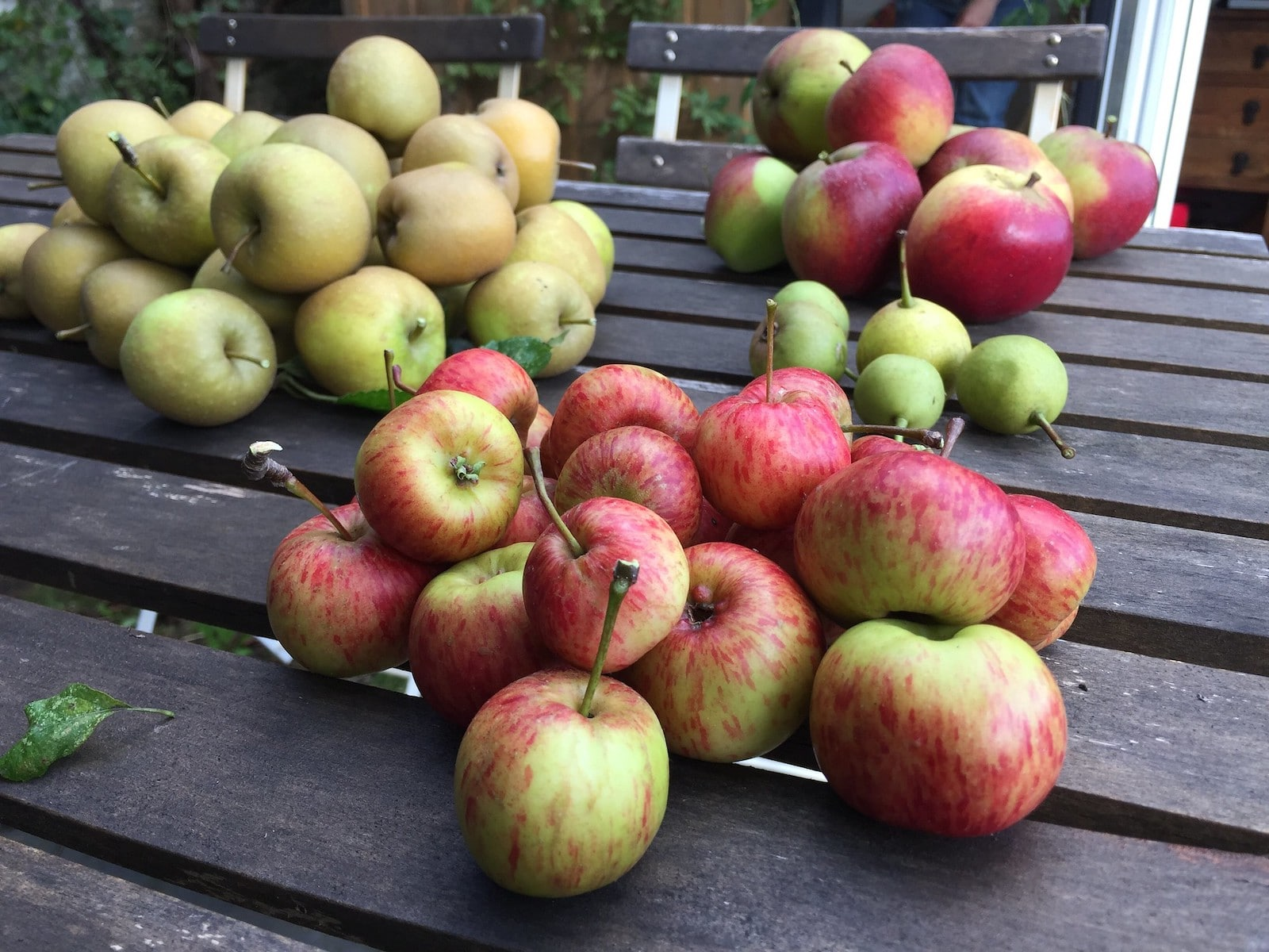 Image of apples and pears