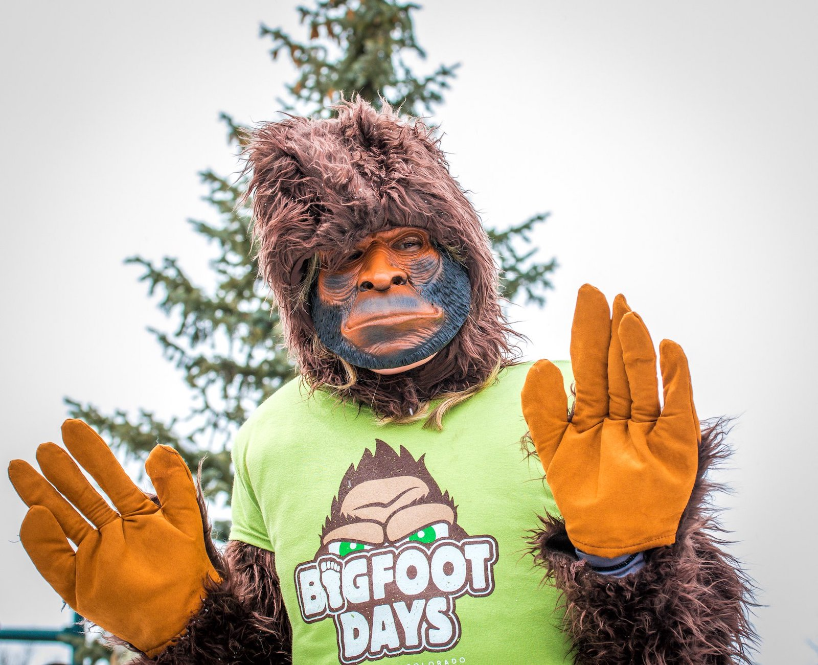 Gambar seseorang yang berpakaian seperti Bigfoot di Bigfoot Days di Estes Park, Colorado