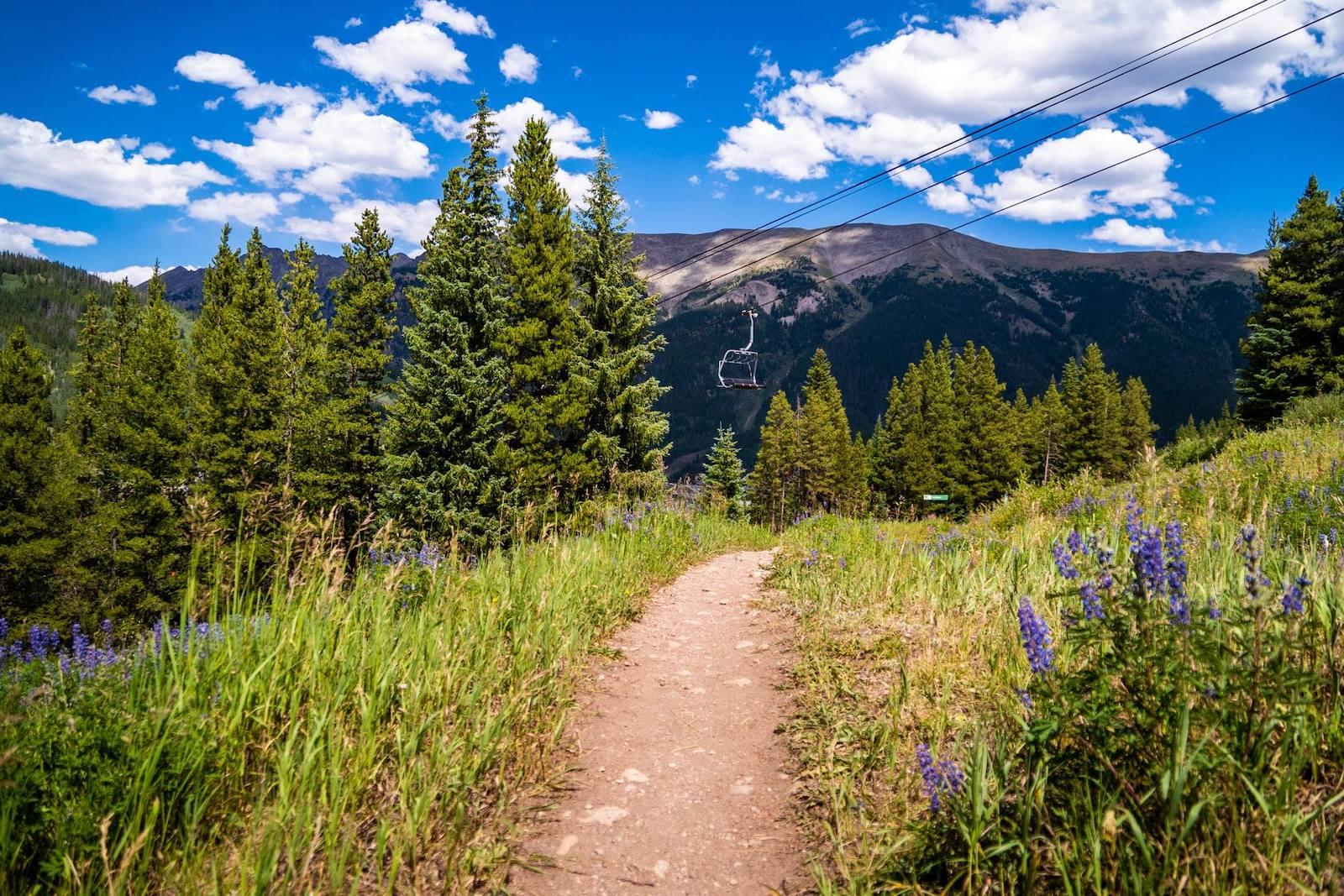 Gambar jalan melalui ladang di Copper Mountain, Colorado