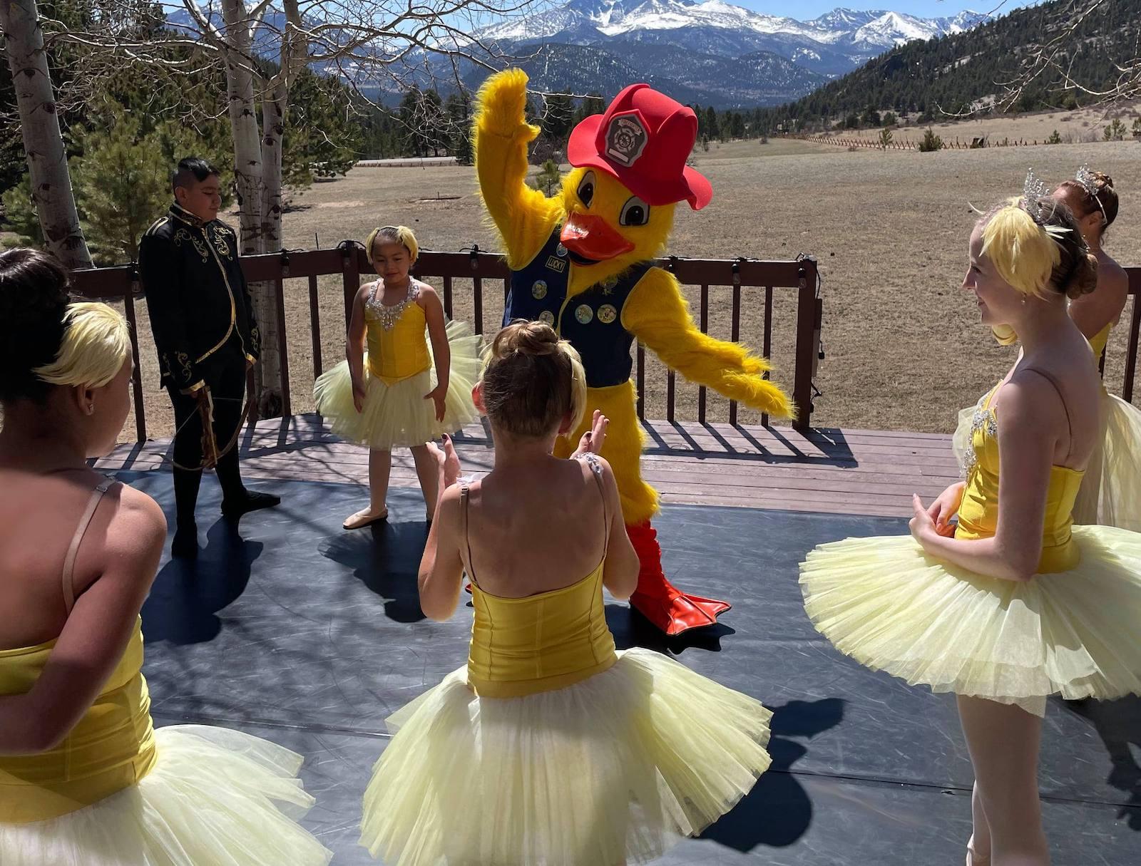 Gambar bebek yang mengenakan kostum melakukan balet dengan penari di Festival Balap Bebek Taman Estes di Colorado