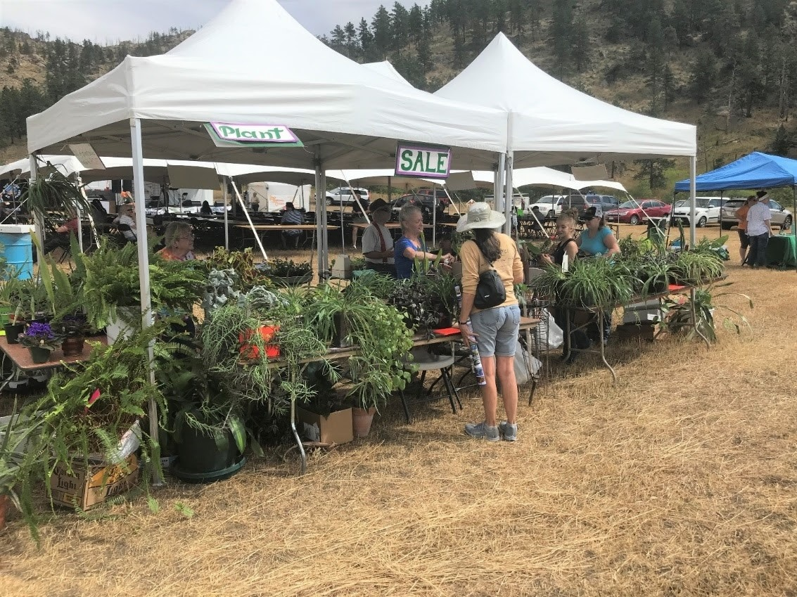Image of plants being sold at the Rist Canyon Volunteer Fire Department Mountain Festival in Bellvue, Colorado