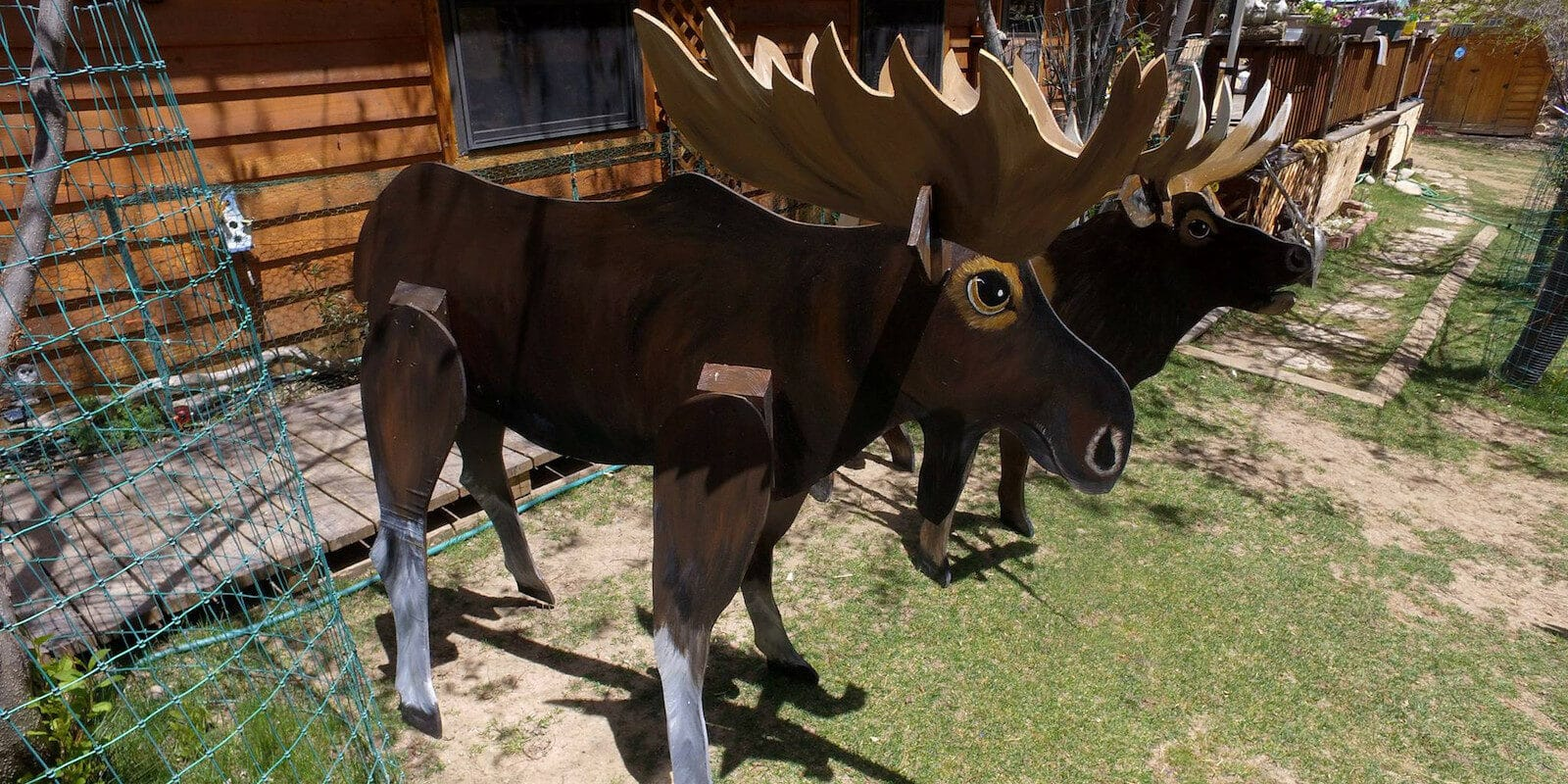 Image of a painted moose at Sweet's Wildlife Preserve Art Zoo in Lake City, Colorado