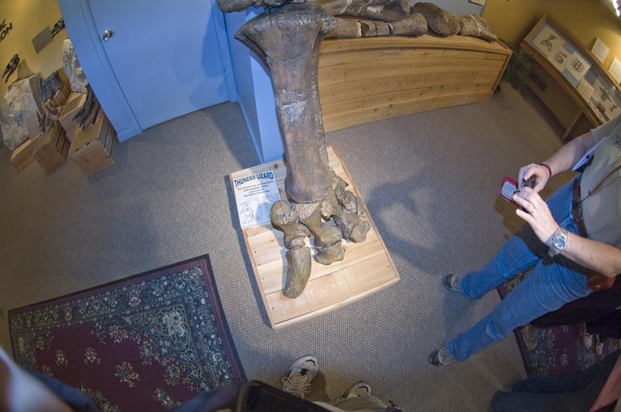 Museum Sejarah Alam Morrison, CO