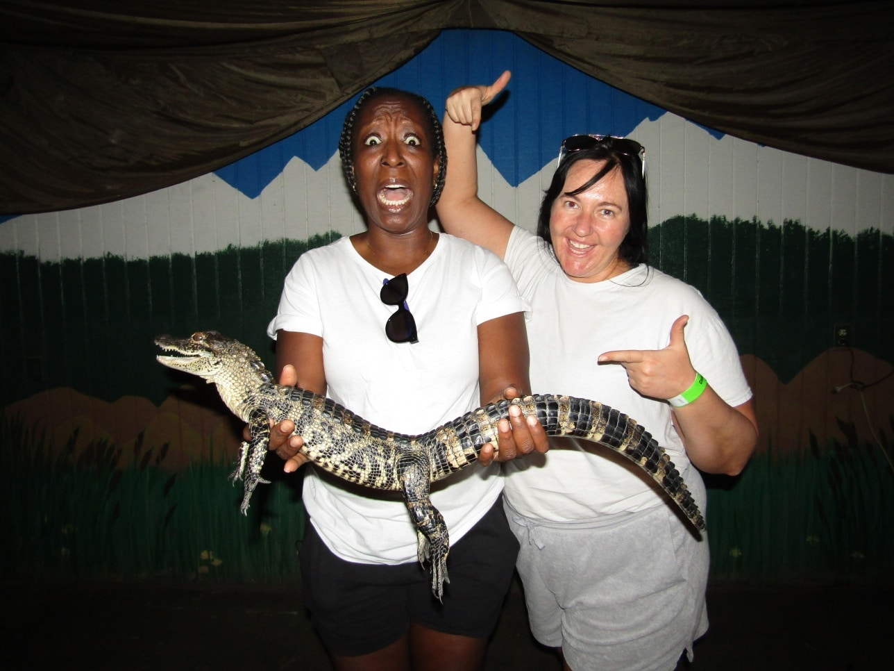 Image of guests holding a alligator at the Colorado Gator Garm