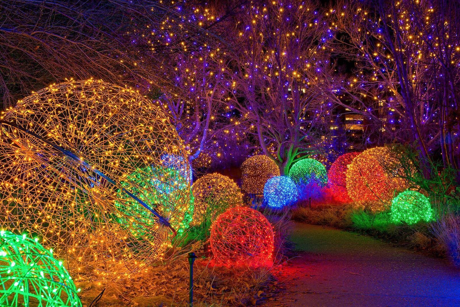 Image of the Denver Botanic Gardens Blossoms of Light event in Colorado