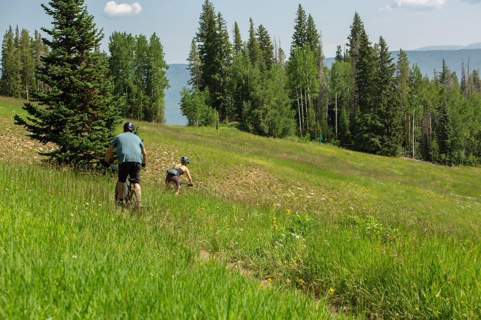 Image of people mountain biking at Beaver Creek Mountain Resort in Colorado