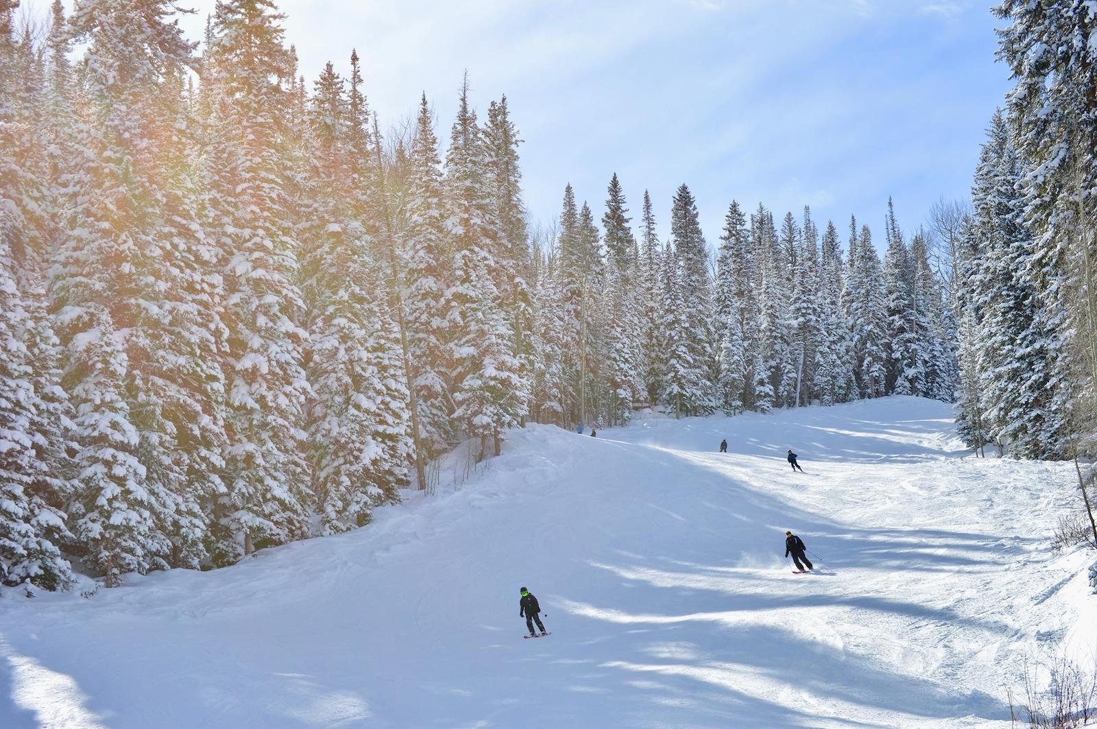 Image of the skiers on the slopes at Powderhorn Resort in Mesa, CO